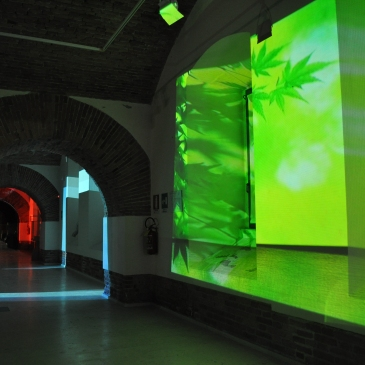 Sala del museo con luce verde